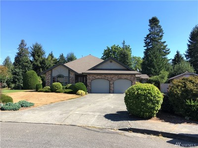 Lynden Single Family Home For Sale: 510 Palmer Ct