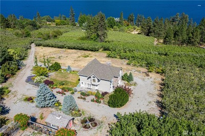 Chelan County Single Family Home For Sale: 15155 S Lakeshore Rd