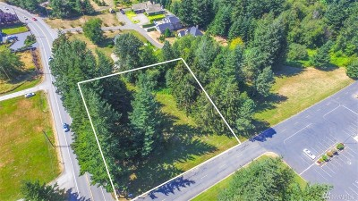 Whatcom County Residential Lots & Land For Sale: 3 Good News Lane