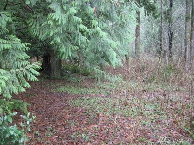 Whatcom County Residential Lots & Land For Sale: 29 Brook Lane