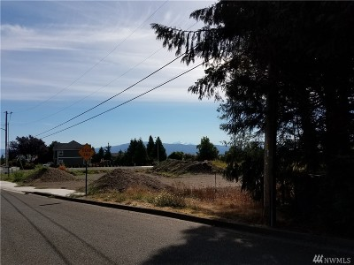 Lynden Residential Lots & Land For Sale: 1080 E Front St
