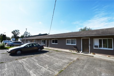 Sumas Multi Family Home For Sale: 124 Mitchell St