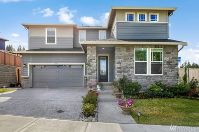 Gig Harbor Single Family Home For Sale: 3966 Sentinel Dr