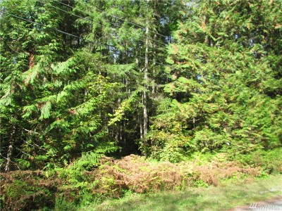 Whatcom County Residential Lots & Land For Sale: 7437 Canyon View Dr