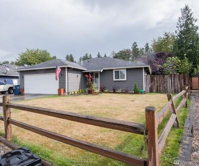 Sumas Single Family Home For Sale: 418 Wilson Lane