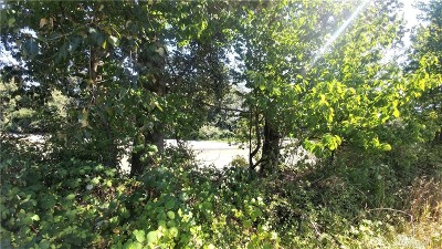 Lynden Residential Lots & Land For Sale: 1 River Rd