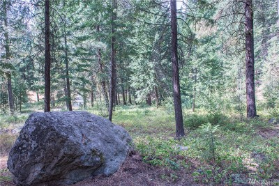 Mazama Residential Lots & Land For Sale: 84 Chechaquo Ranch Rd