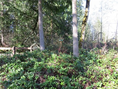Eatonville Residential Lots & Land For Sale: 4305 433rd St E