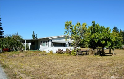 Single Family Home For Sale: 22025 Old Highway 99 SW