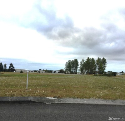 Residential Lots & Land For Sale: 108 Skyhawk Dr