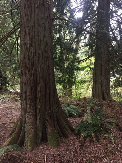 Sedro Woolley WA Residential Lots & Land For Sale: $10,000