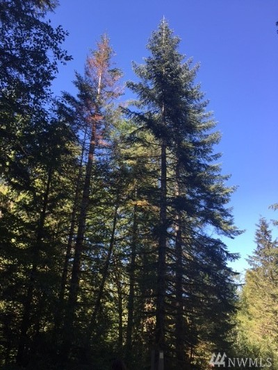 Maple Valley WA Residential Lots & Land For Sale: $210,000