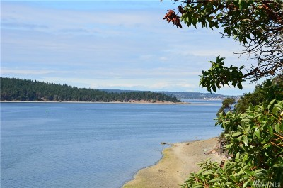 Port Ludlow Residential Lots & Land For Sale: 902 Flagler Rd.