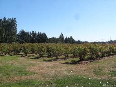Ferndale WA Residential Lots & Land For Sale: $845,000