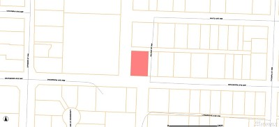 Residential Lots & Land For Sale: 1724 Dickinson Ave NW