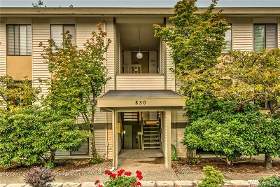Kirkland Condo/Townhouse For Sale: 830 Kirkland Wy #102