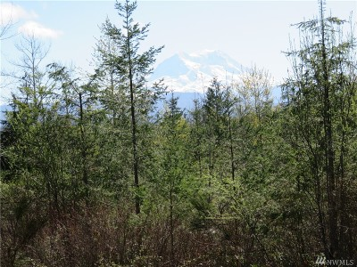 Eatonville Residential Lots & Land For Sale: 4304 433rd St E