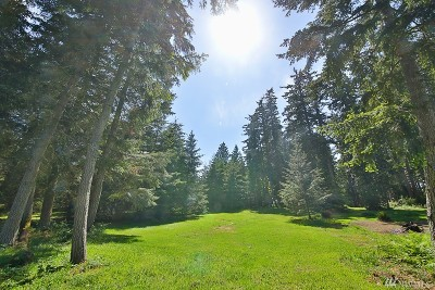 Clinton Residential Lots & Land For Sale: 6883 Holst Rd