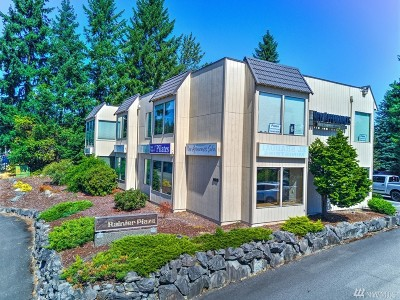 Bonney Lake WA Commercial For Sale: $1,595,000