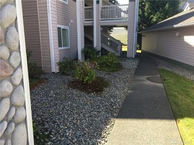 Everett Condo/Townhouse For Sale: 11504 12th Ave W #B105