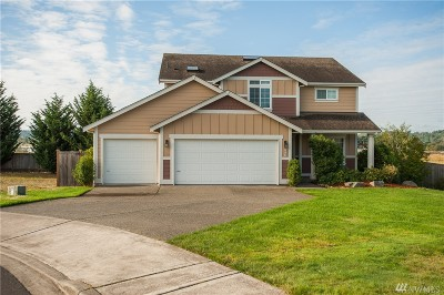 Chehalis Single Family Home For Sale: 238 Wind River Dr