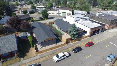 Buckley Multi Family Home For Sale: 163 S Cedar St
