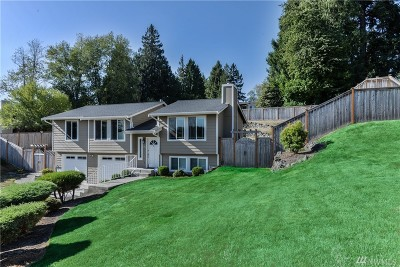 Puyallup Single Family Home For Sale: 1302 Valley View Dr