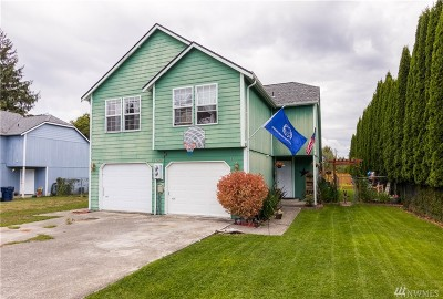 Sedro Woolley Multi Family Home For Sale: 1002 Sterling St #A&B