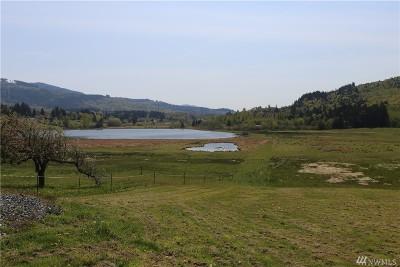 Bellingham Residential Lots & Land For Sale: 252 Mt Baker Hwy