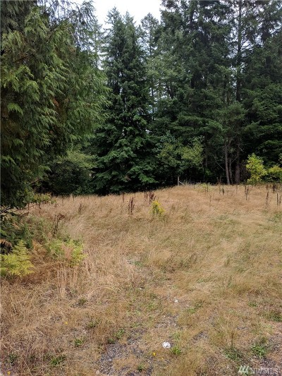 Residential Lots & Land For Sale: 2550 E Mason Lake Rd
