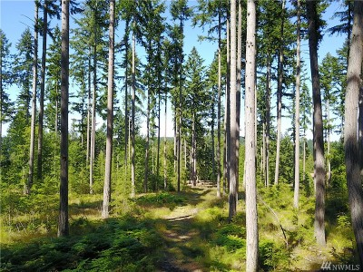 King County Residential Lots & Land For Sale: 12006 204th St
