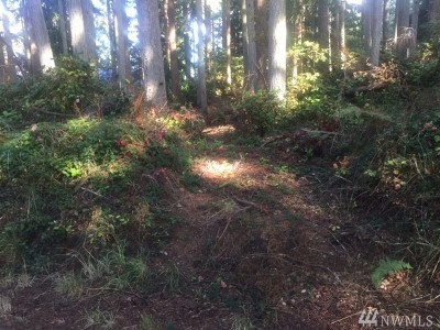 Freeland Residential Lots & Land For Sale: Spruce St