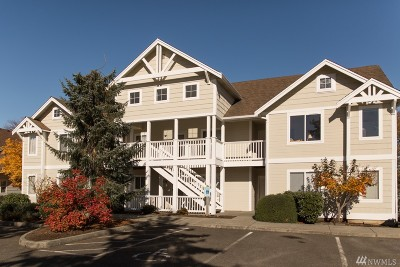 Lynden Condo/Townhouse For Sale: 236 W Maberry Dr #202