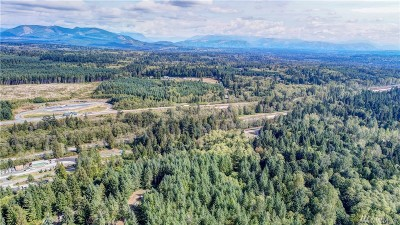 Snohomish County Residential Lots & Land For Sale: 28304 Old 99 N