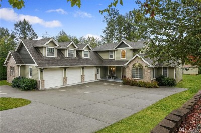 Sedro Woolley Single Family Home For Sale: 313 Longtime Lane
