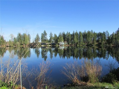 Grapeview Residential Lots & Land For Sale: 840 E Benson Lake Rd