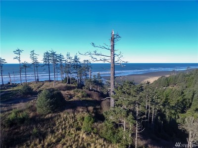 Grays Harbor County Residential Lots & Land For Sale: 17 W Chauncey Lane