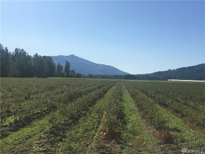 Deming Farm For Sale: 2522 Valley Hwy