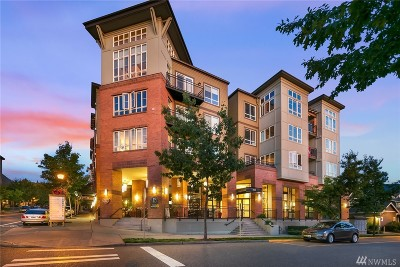 Issaquah Condo/Townhouse For Sale: 1838 25th Ave NE #102