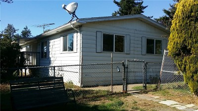 Custer Single Family Home For Sale: 3496 Birch Bay Lynden Rd