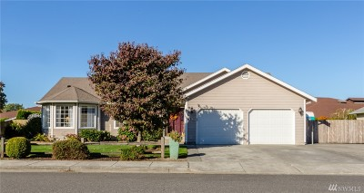 Lynden Single Family Home For Sale: 1813 Eastwood Wy