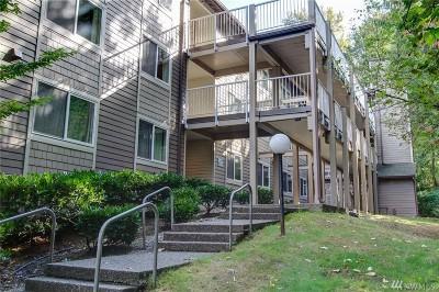 Issaquah Condo/Townhouse For Sale: 206 Mt Park Blvd SW #D-304