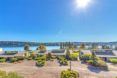 Port Ludlow WA Condo/Townhouse For Sale: $215,000