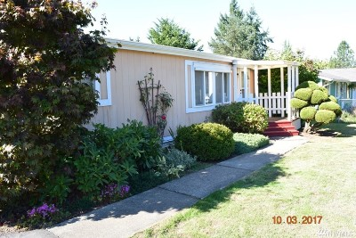 Napavine Single Family Home For Sale: 535 3rd Ave NW