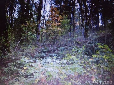Whatcom County Residential Lots & Land For Sale: Mount Baker Highway