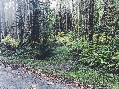 Whatcom County Residential Lots & Land For Sale: 10007 Railroad Avenue