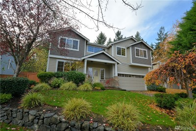 Gig Harbor Single Family Home For Sale: 4106 19th Ave NW