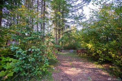 Maple Falls Residential Lots & Land For Sale: 8595 Ginkgo Dr