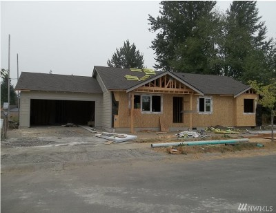 Sedro Woolley Single Family Home For Sale: 505 Debbie Dr