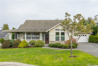 Bellingham Single Family Home For Sale: 3290 Spyglass